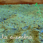 Elements Sound Art – La Siembra